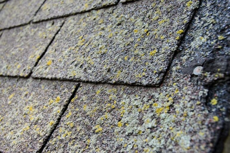 Need a New Roof in Dearborn Michigan? Here's How To Tell